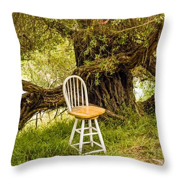 A Little Solitude Throw Pillow
