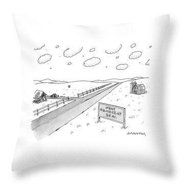 A Long, Country Road Is Pictured With A Barn Throw Pillow