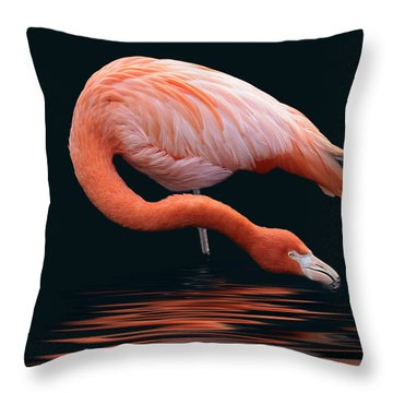A Long Sip Throw Pillow