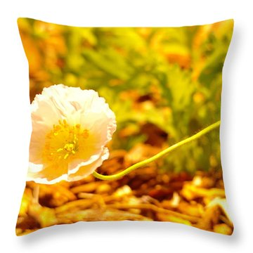 A Long Stemmed Flower Throw Pillow by Jeff Swan