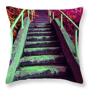 Throw Pillow featuring the photograph A Long Way 2 by Laurie Tsemak