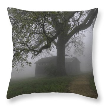 A Look Back In Time Throw Pillow by Lynn Bauer