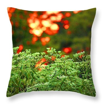 A Love Bug Sunset Throw Pillow by Kim Pate