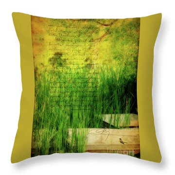 A Love Letter From Summer Throw Pillow by Lois Bryan