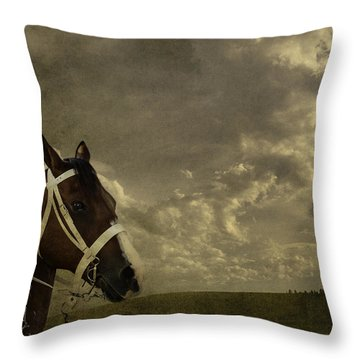 A Lovely Horse Throw Pillow