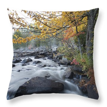 A Lovely Morning Throw Pillow