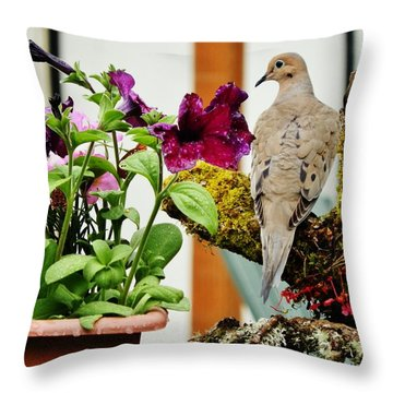 Throw Pillow featuring the photograph A Lovely Morning by VLee Watson