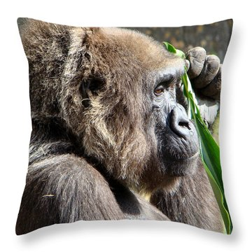 Throw Pillow featuring the photograph A Lovely Thought by Phyllis Beiser