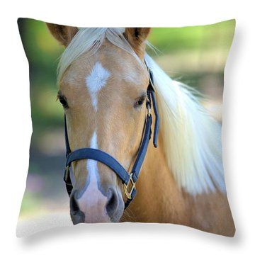 Throw Pillow featuring the photograph A Loyal Friend by Gordon Elwell