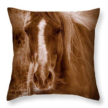 A  ''mare'' Ica Throw Pillow