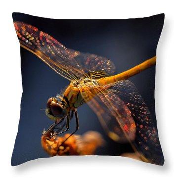 Macros Throw Pillows