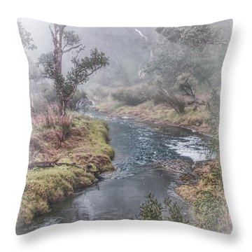 A Misty Morning In Bridgetown Throw Pillow by Elaine Teague