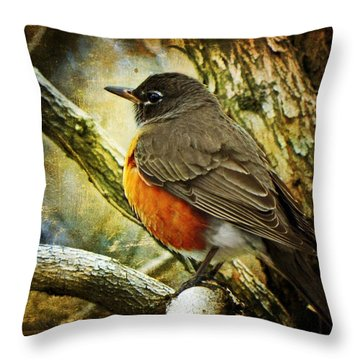 A Moment For Mother Robin Throw Pillow by Leah Moore
