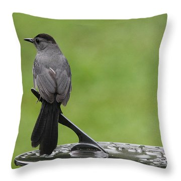 Throw Pillow featuring the photograph A Moment In Time by Trina  Ansel