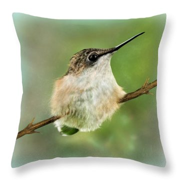 A Moments Pause Throw Pillow
