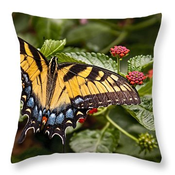 Throw Pillow featuring the photograph A Moments Rest by Penny Lisowski