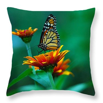 Throw Pillow featuring the photograph A Monarch by Raymond Salani III