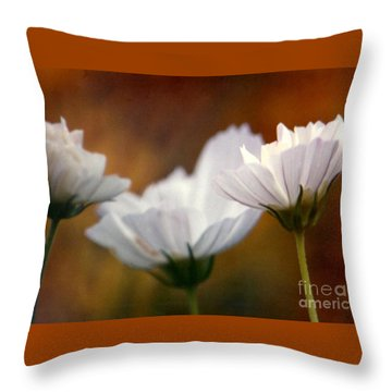 A Monet Spring Throw Pillow by Michael Hoard