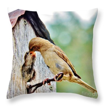 A Mothers Love 3 Throw Pillow