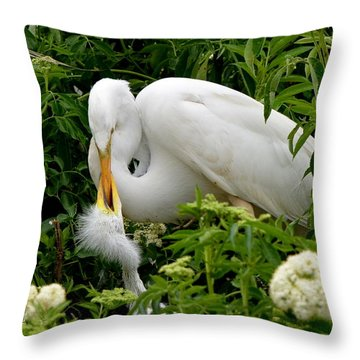 A Mothers Love Throw Pillow by Jodi Terracina