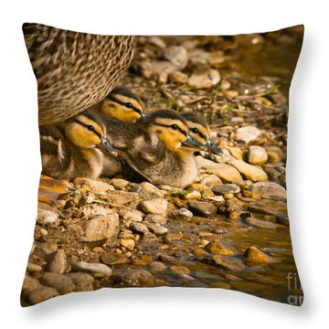 A Mother's Love Throw Pillow by Robert Frederick