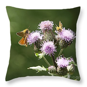 A Moth's Feast Throw Pillow