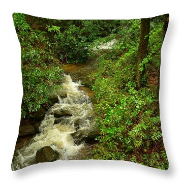 Throw Pillow featuring the photograph A Mountain Stream After The Spring Rains by Bob Sample
