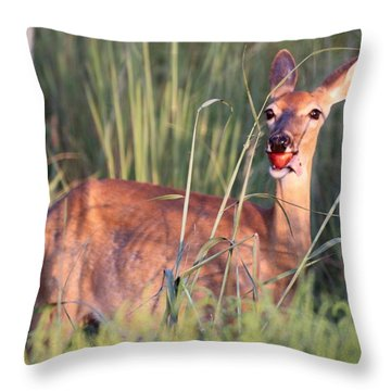 A Mouth Full Throw Pillow