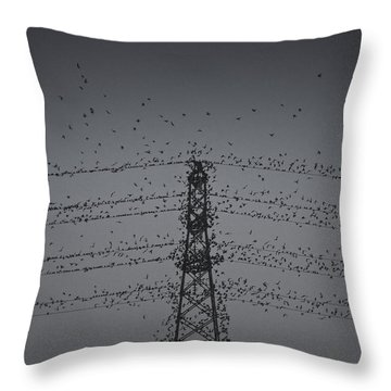 A Murmuration Of Starlings Throw Pillow