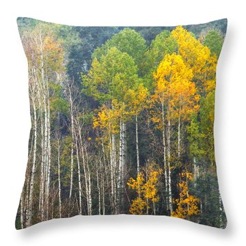 A Muted Fall Throw Pillow by Rick Furmanek