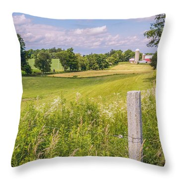 A Nation's Bread Basket  Throw Pillow