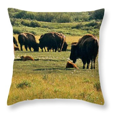 A New Beginning Grand Teton National Park Throw Pillow