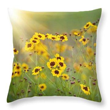 A New Day Throw Pillow by Scott Pellegrin