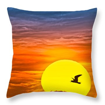 A New Day Throw Pillow by Susan Candelario