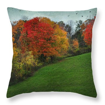 A New England Autumn Throw Pillow by Barbara Manis