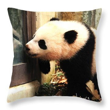 A New Friend Throw Pillow by Olivia Hardwicke