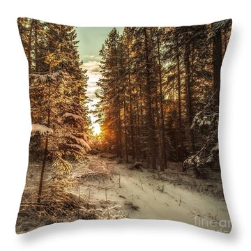 A New Path In Your Life Throw Pillow by Rose-Maries Pictures