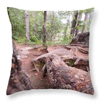 A New View From The Woods Throw Pillow
