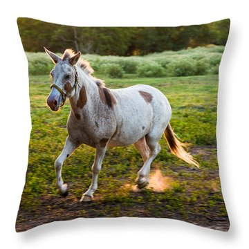 A Noble Steed Throw Pillow