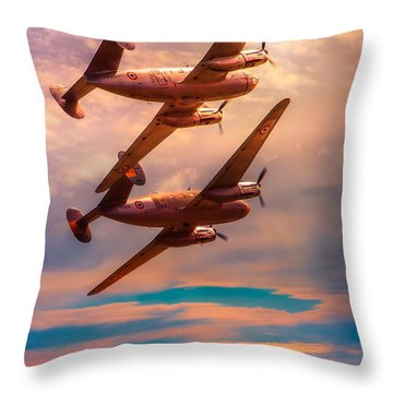 Throw Pillow featuring the photograph A Pair Of Flamingos by Chris Lord