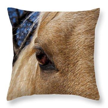A Palomino's Eye. Throw Pillow