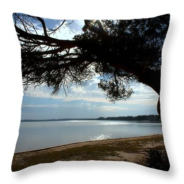A Park With Tranquil Moments Throw Pillow by Debra Forand