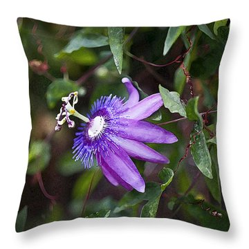 A Passion For Flowers Db Throw Pillow by Rich Franco