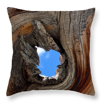 A Patch Of Blue Throw Pillow by Jim Garrison