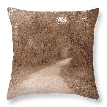 Throw Pillow featuring the photograph A Path In Life by Beth Vincent