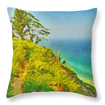 A Path To A Tree Throw Pillow