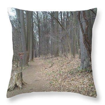 A Path To Follow Throw Pillow