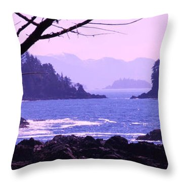 a Peek at the Bay Throw Pillow