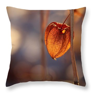 Throw Pillow featuring the photograph A Peek Inside by Kenny Glotfelty