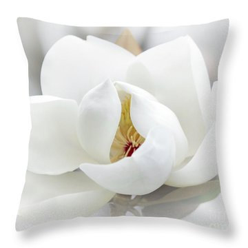 A Peek Inside Throw Pillow